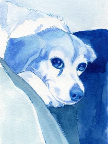 Blue Beagle.jpg