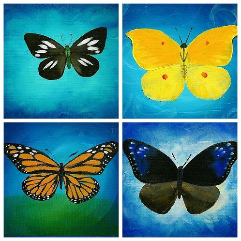 8 Card Set of 4 Different  Butterflies