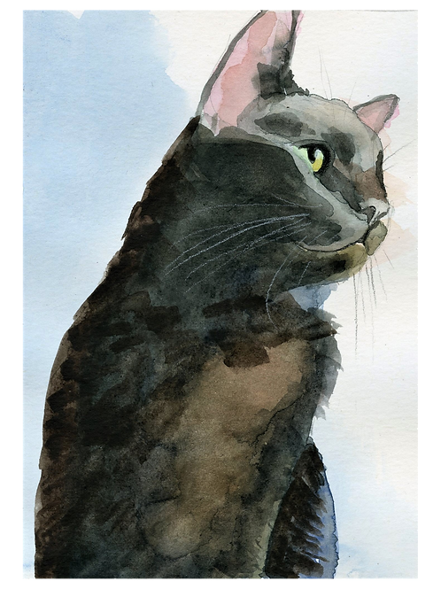 Watercolor of Black Cat
