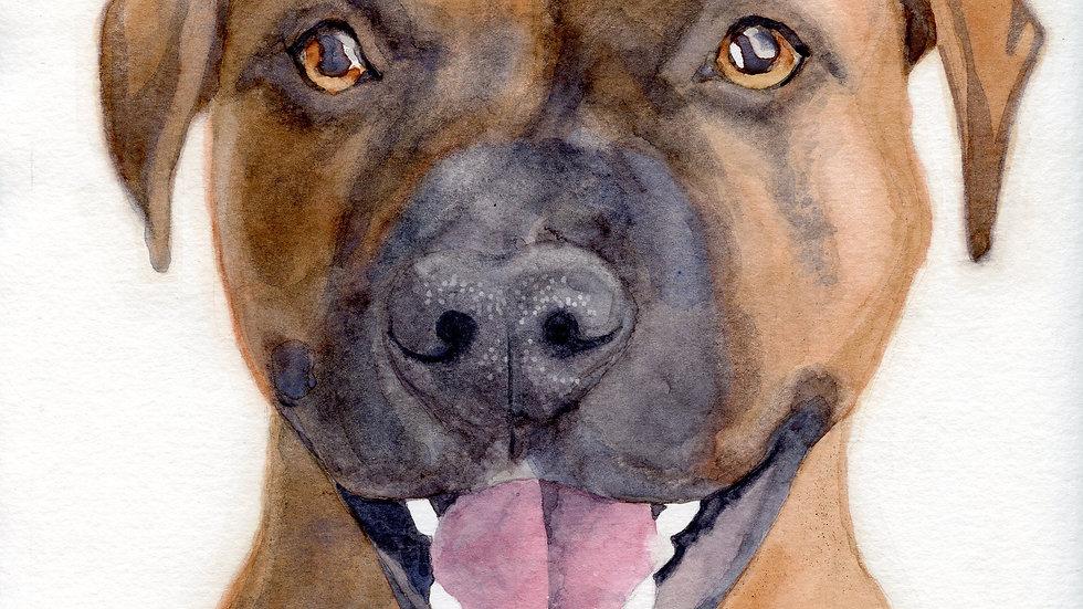 Custom Pet Portrait - Oct-Nov 2020