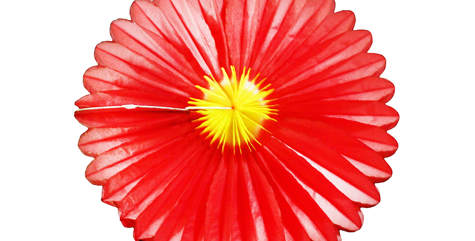 Flor plegable g