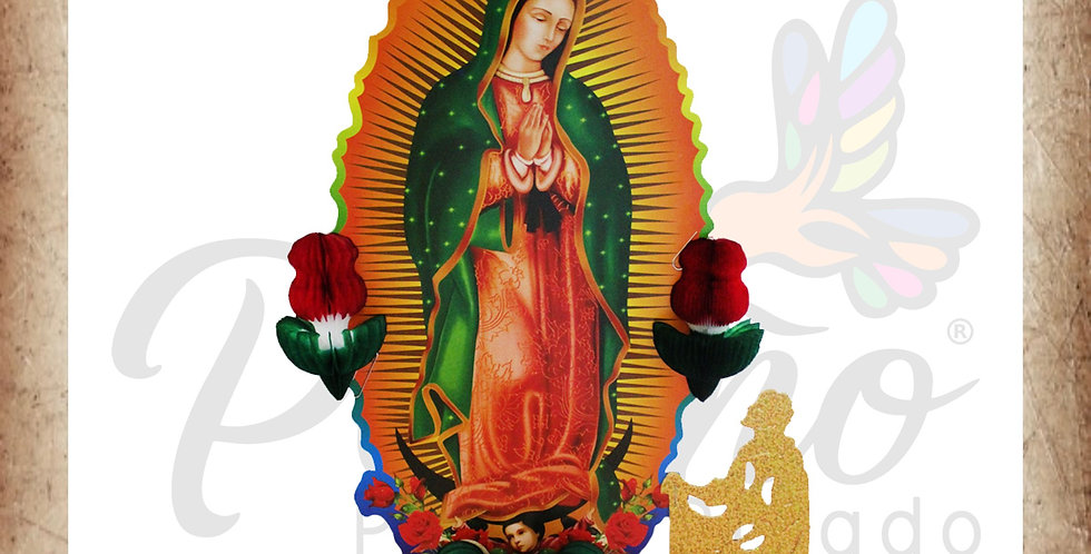 Virgen de Guadalupe con rosas