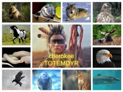 Stjernetegn indiansk Totem indianer
