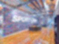Hillcrest Sport NG90587.jpg