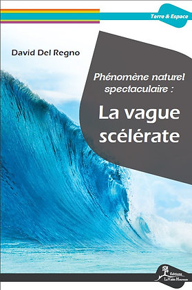 La vague scélérate