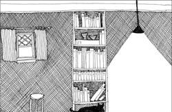 Black Cat and the Bookshelf