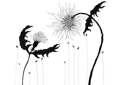 small-birdflowers.png