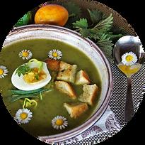 Atelier plantes sauvages comestibles avec Sens essentielles par laurent Latil Grenoble