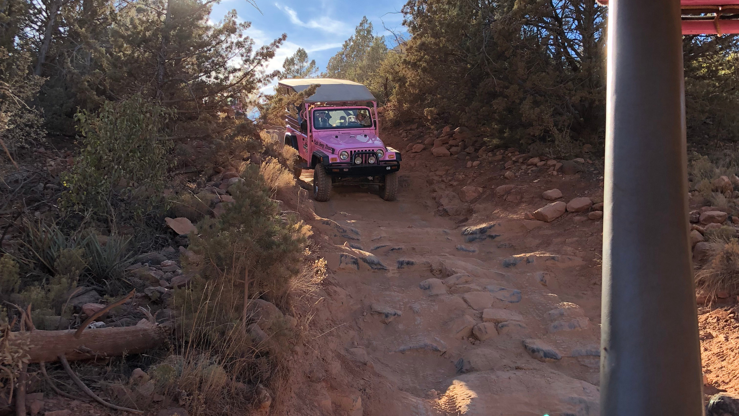 Amazing trails!