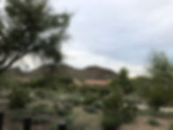 This Airbnb's beautiful backyard view of the mountains, on the outskirts of Phoenix
