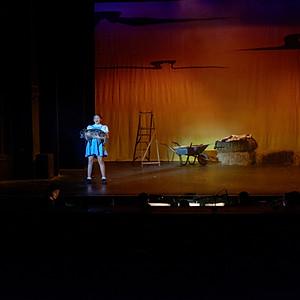 Wizard Of Oz Albany Theatre