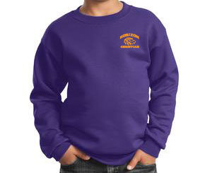 PURPLE YOUTH CREW NECK SWEATSHIRT PC90Y PURP