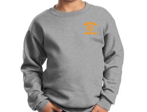 A. GRAY YOUTH CREW NECK SWEATSHIRT PC90Y AGRY