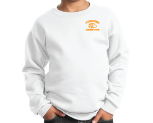 WHITE YOUTH CREW NECK SWEATSHIRT PC90Y WHT