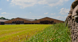 Large cattle shed 2