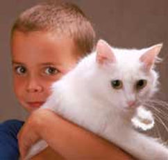 boy with cat.jpg