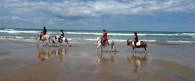 equitation.gite.rural.wissant.jpg