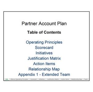Partner Account Planning