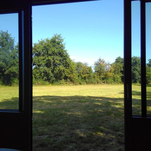 La Tiny Kiwi View from the Inside