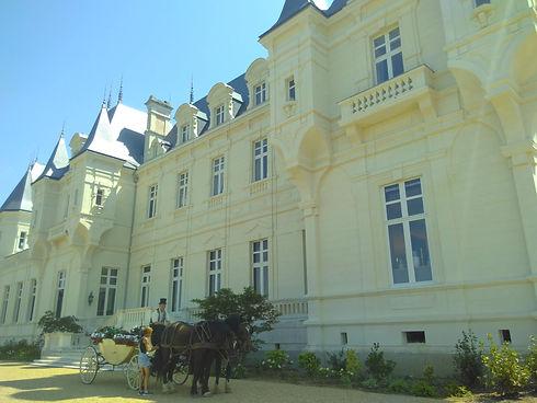 Le Chateau de Falloux Le Bourg D'Ire