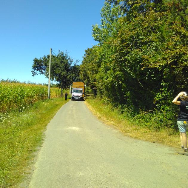 La Tiny Kiwi coming down the road