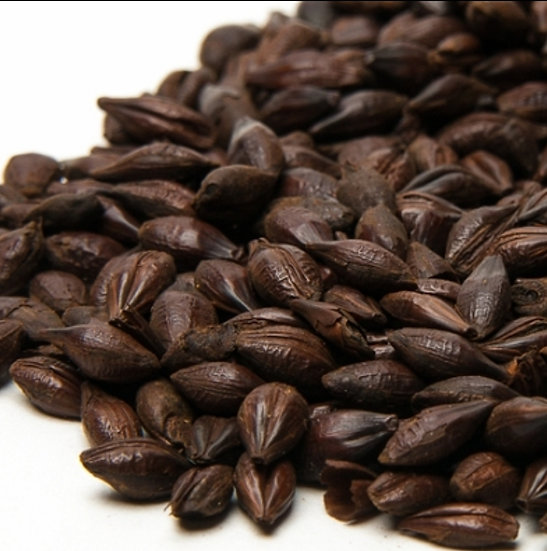 Dark Chocolate Malt 1000-1200ebc/500gms