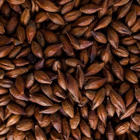 Roasted Barley Malt/500gms
