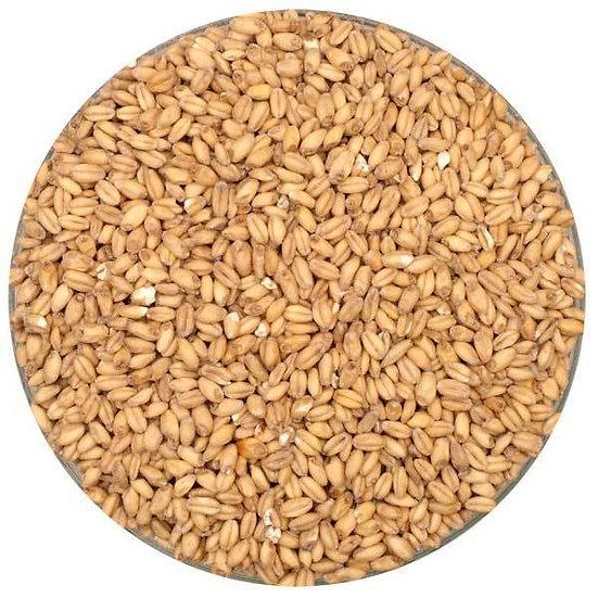 Wheat Malt/Kg