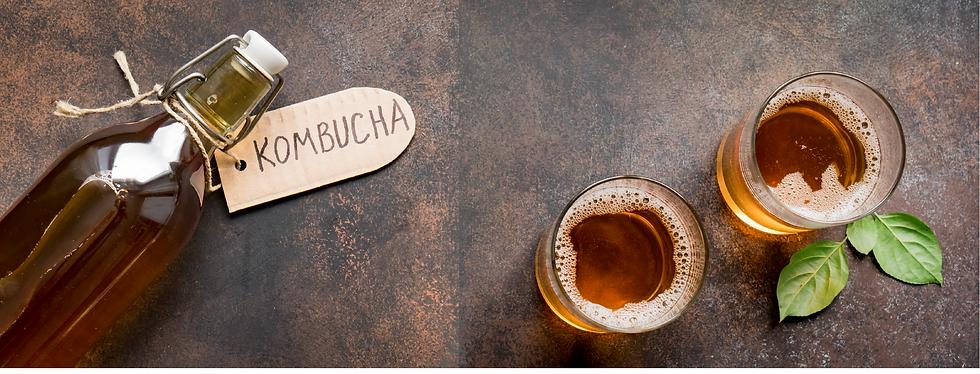 kombucha-large.png