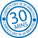 dry in 30 logo blue.png
