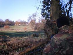 A Hide in a Treeline.jpg