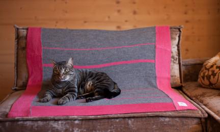 Fatou Blanket_2.jpg