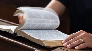 Conocer la verdad y servirla con amor en la cotidianidad