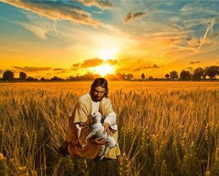 El fascinante Amor del Padre. Para nuestra basta una glándula