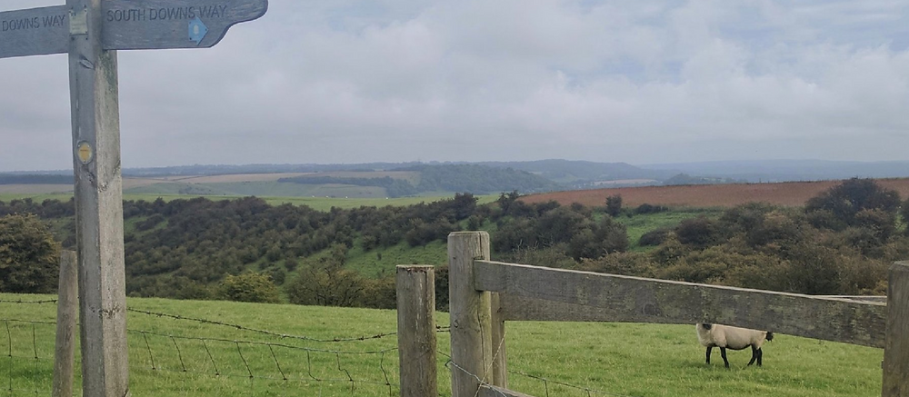South Downs Way, UK