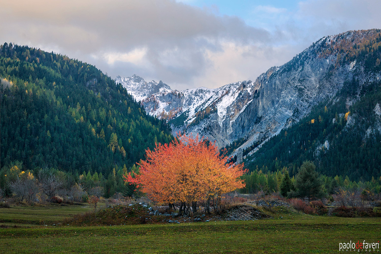 Valle_Stretta_Western_Alps_Piedmont_Ital