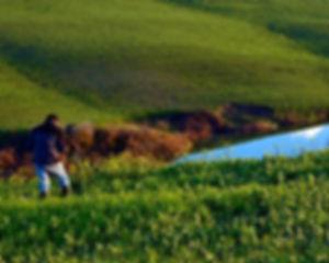 Paolo_De_Faveri_countryside