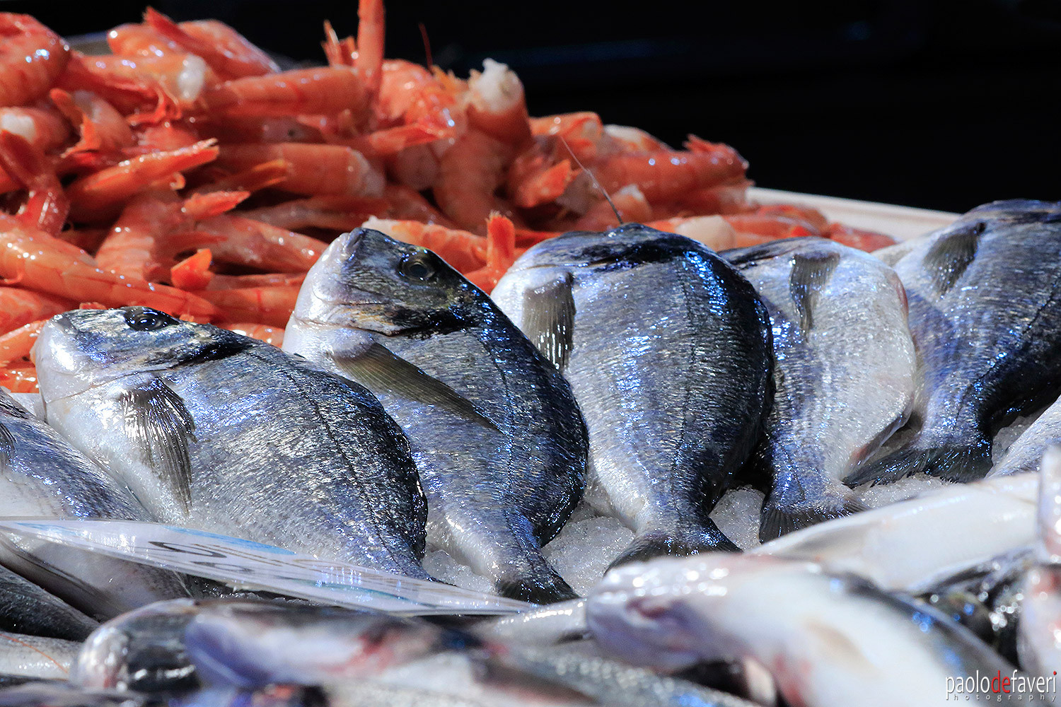 Venice_Italy_Fish_Market_Close_Up.jpg