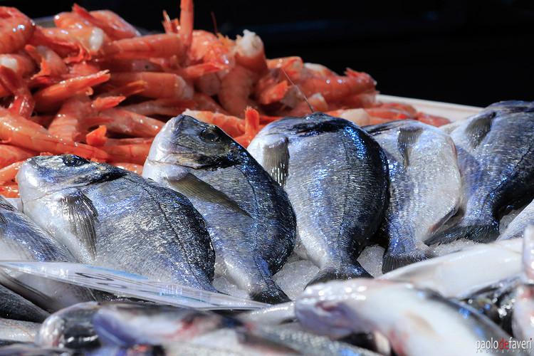 Venice_Italy_Fish_Market_Close_Up.jpg