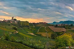 PDF_PAN119_Serralunga_Barolo_Vineyards_L