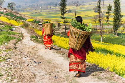 Photo tour Nepal November 2020_Porters