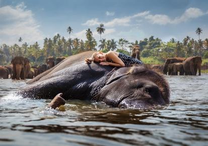 Photo tour Nepal November 2020_Elephant.