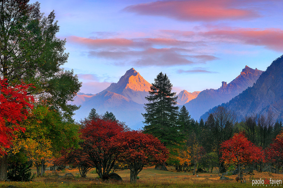 Fall_Colors_Foliage_Valle_Stretta_Wester