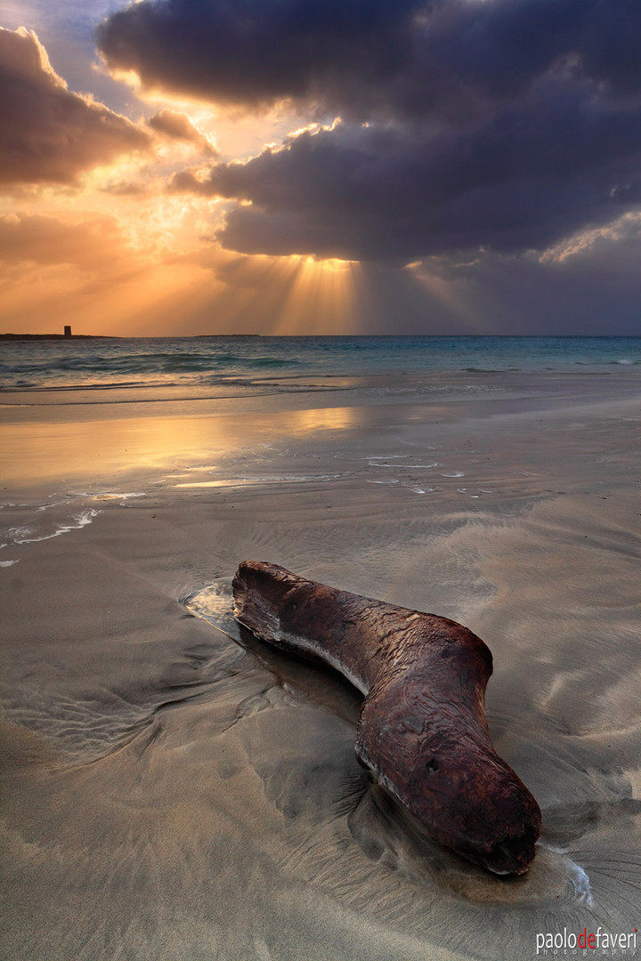 Sunrise_Pelosa_Beach_Sardegna_Italy.jpg