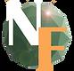 Vertex Logo-flare4 small.png