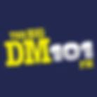 BIG DM logo.png