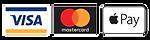 we accept visa mastercard and apple pay