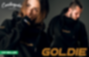 C-HOODIE-GOLD.png