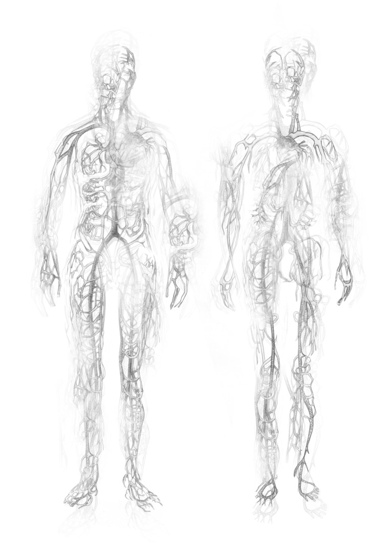 Body Suit 3 - Vein-Nerve System - Concept - 1/3