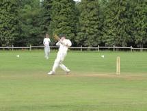 Cricket2010-16